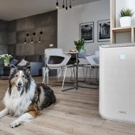 Idealny oczyszczacz powietrza dla alergika i astmatyka – Klarta
